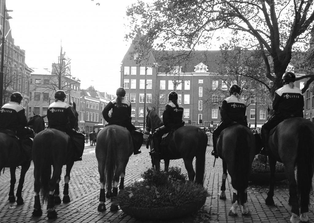 politiepaarden, protest, den haag